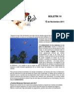Boletín 14 de correo real de las mariposas monarca. Temporada 2011 a 2012