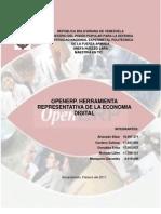 informe sobre Openerp