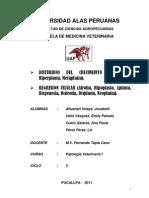 Primer Trabajo Patologia I