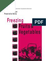 Freezingfruitsandvegetables(Cong Nghe Lanh Dong Rau Qua)