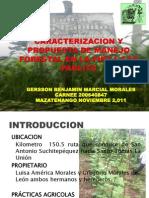 Caracterizacion y Propuesta de Manejo Forestal en La
