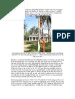 Dien Nang Thuong Pham