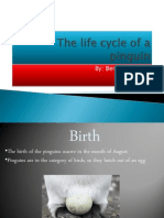 The Life Cycle of a Pinguin