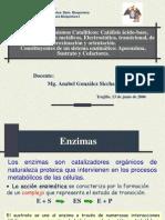 T-9 mecanismos cataliticos