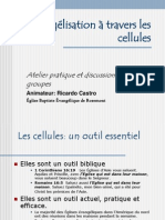 L ion a Travers Les Cellules