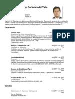 CV Andy Santiago Gonzales Del Valle Bejarano