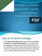 Demo ecología y niveles de organización  en los