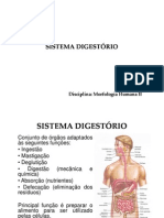 aula_sistema_digestório_morfo_II_Lu_2010