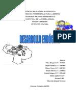 Trabajo del desarrollo endógeno