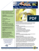Thinking Big, Working Small Activity Guide Updated