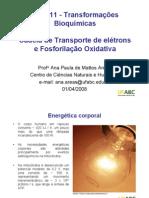 Aula 12 - Cadeia de Transporte de Eletrons e Fosforilacao Oxidativa