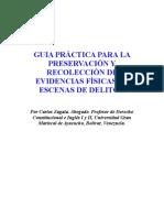 GUIA PRÁCTICA I