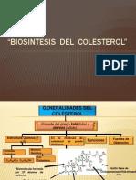 Expo Biosintesis Del Colesterol Original