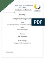 Ciclos Biogeoquimicos3