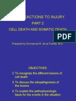 CDSA Cell Death