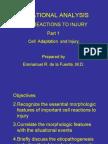 Patho1 - CDSA-Cell Adaptation and Injury
