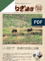 たまねぎ通信 NOVEMBER.2011.No.19