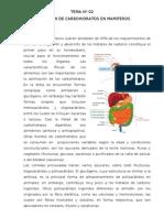 Absorcion de Carbohidratos (CUY)