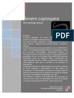 Genero Leptospira