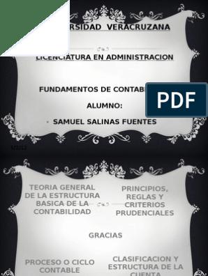 Actividad 1 Samuel Salinas Principios De Contabilidad