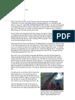 Lại bàn về cụ Rùa Hồ Gươm