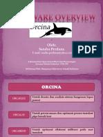Materi 6 Orcaflex Orchina