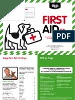 4legs First Aid Brochure
