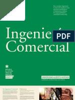 INGENIERIA COMERCIAL 2012 - UAH