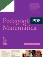 PEDAGOGIA EN MATEMATICA 2012 - UAH