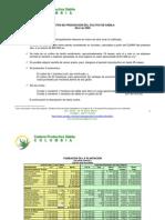 Costos de Produccion Cultivo 2009