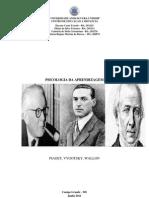 Psicologia Do to PDF