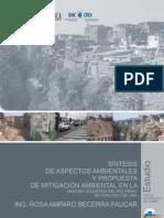 Analisis de Los Aspectos Ambient Ales y Propuesta de Mitigacion Mirr