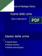 Esame Delle Urine
