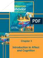 40472538 Consumer Behaviour and Marketing Strategy Peter Olson Chapter 003