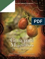 Guia de Los Maestros 7jul09