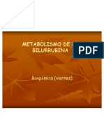 16 Metabolismo de La Bilurrubina