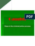 Criminal Steps PPT