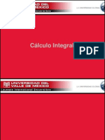 Integrales Algebraicas