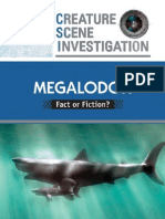 Megalodon Fact or Fiction