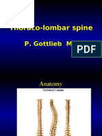 Thoraco Lombar Spine