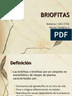 briofitas botanica I