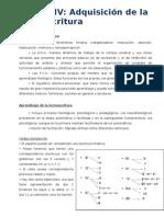 Unidad IV. Aprendizaje Lectoescritura97