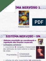 nervoso1