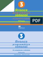 Avance_Programatico_3