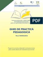 Practica pedagogica