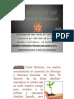 elsecretodelassietesemillas-110512103350-phpapp01