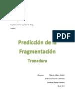 Predicción de la fragmentación