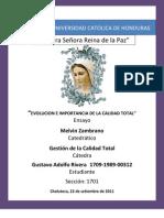 Ensayo Cap. 1. Gustavo Adolfo Rivera Rios 1709-1989-00231