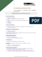28_07_04_MODELOS_DE_C.V.