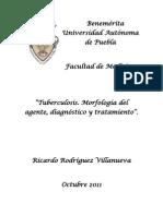 Tuberculosis Morfología del agente, diagnóstico y tratamiento